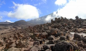 Many rocks along the trail, looking up toward Kibo.