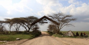 The gateway to Serengeti National Park.