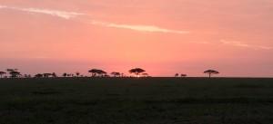 Sun rising over the Serengeti.