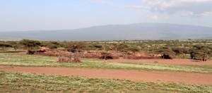 Another Masai village.