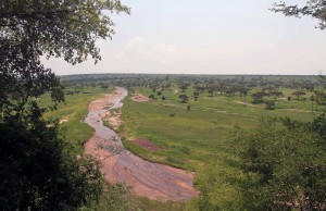 Tarangire River.