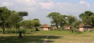 Huts nearby Tarangire National Park.