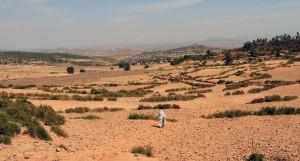 Terraced fields north of Axum.
