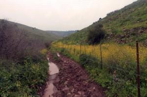 Following the muddy trail next to Nemerim Stream.