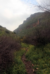 Hiking through the Arbel Valley.