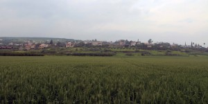 The town of Migdal (where Mary Magdalene is from), beyond the wheat field.