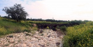 Historic stone bridge crossing the Amud Stream.