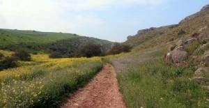 The alternative trail to Tsefat.