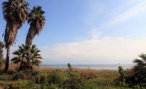 The Sea of Galilee, near Ginosar.