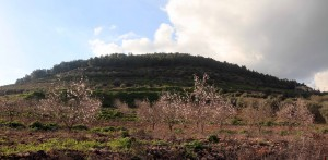 Mount Tabor, where the Transfiguration of Christ occurred.