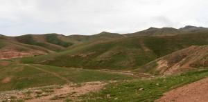 The Judaean Desert, green with recent rainfall.