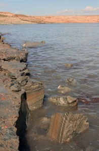 Chunks of Dead Sea mud that have broken off from the shore.