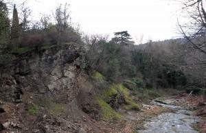 Stream inside the National Botanical Gardens of Georgia.