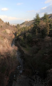 Stream and trees inside the botanical gardens.