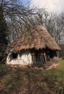 Hut from the Transcarpathian flatland.