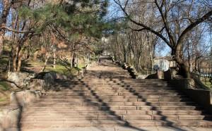 Steps in Valea Morilor park.