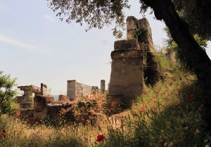 Ruins and flowers in the Kerameikos archaeological site.