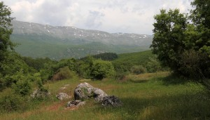 The Galičica Mountains seen while hiking in Galičica National Park.