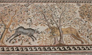 Another mosaic, of a lion going after a cow (found in Heraclea Lyncestis).