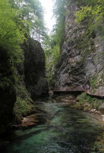 Another view of Vintgar Gorge.