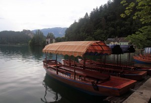 Pletna boats docked at Lake Bled.