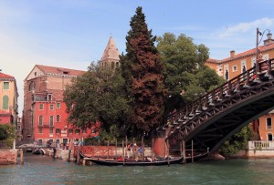 Part of the Ponte dell'Accademia, a wooden bridge over the Grand Canal.