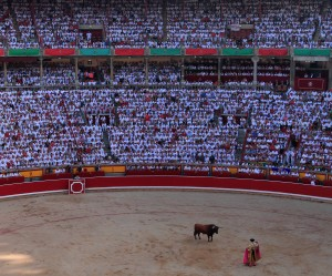 Toro in the ring with the third bull during the tercio de varas.