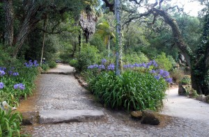 Trail through Monserrate Palace's gardens.