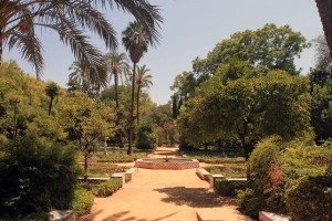 Garden in Maria Luisa Park.