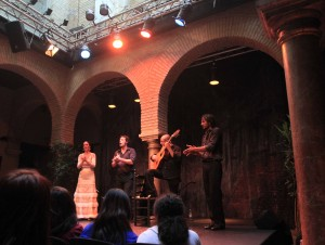 The flamenco dancers and musicians performing during the show at the Museo del Baile Flamenco.