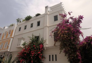 Building with bougainvillea bushes.