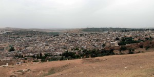 View of Fes' medina from the Merenid Tombs.