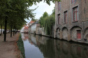 Row of trees along a canal in Bruges.
