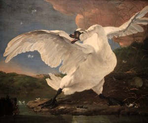 'The Threatened Swan' by Jan Asselijn (1650 AD).