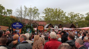 Crowds watching the ceremonies for the Nuremberg Old Town Festival.
