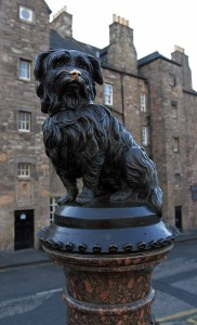 Statue of Greyfriars Bobby (b. 1855/56, d. 1872), a Skye Terrier who spent the last 14 years of his life guarding the grave of his deceased owner.