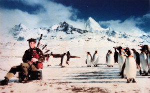 A photograph displayed inside the National War Museum of Scotland that shows a group of penguins captivated by a bagpiper's music on South Georgia Island in 1984 AD.