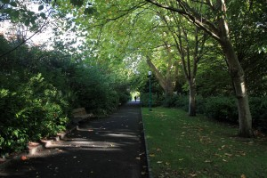Path in Merrion Square.