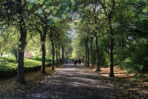 Path in Saint Stephen's Green Park.