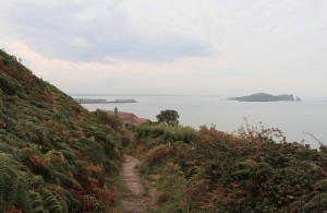 On the Howth coastal trail, looking back toward the town and Ireland's Eye (the small island to the right).