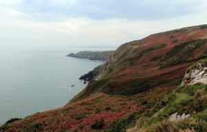 Cliffs at Howth Head with Baily Lighthouse in the distance.