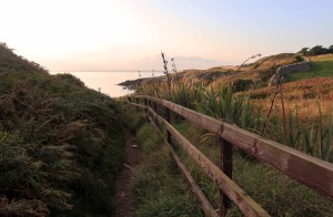 Wooden fence along the Howth coastal trail.