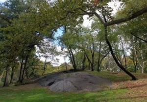 Exposed bedrock in Central Park.
