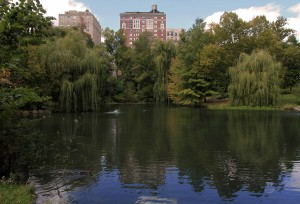 """The Pool"" in Central Park."