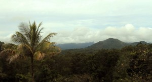 The rugged tropical landscape of Dominica.
