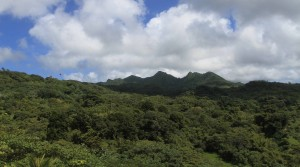 Mount Saint Catherine, the highest mountain on Grenada.