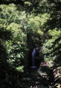 Annandale Falls.