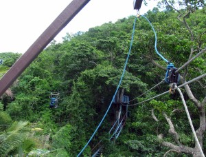 More ziplines in Antigua's rainforest canopy.