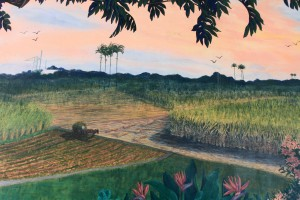 Idyllic painting of sugarcane fields, planted and harvested, to make rum.
