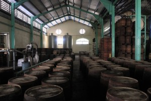 Barrels of rum at Foursquare Rum Distillery.